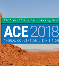American Association of Petroleum Geologists 2018 - Exploration Production - Total