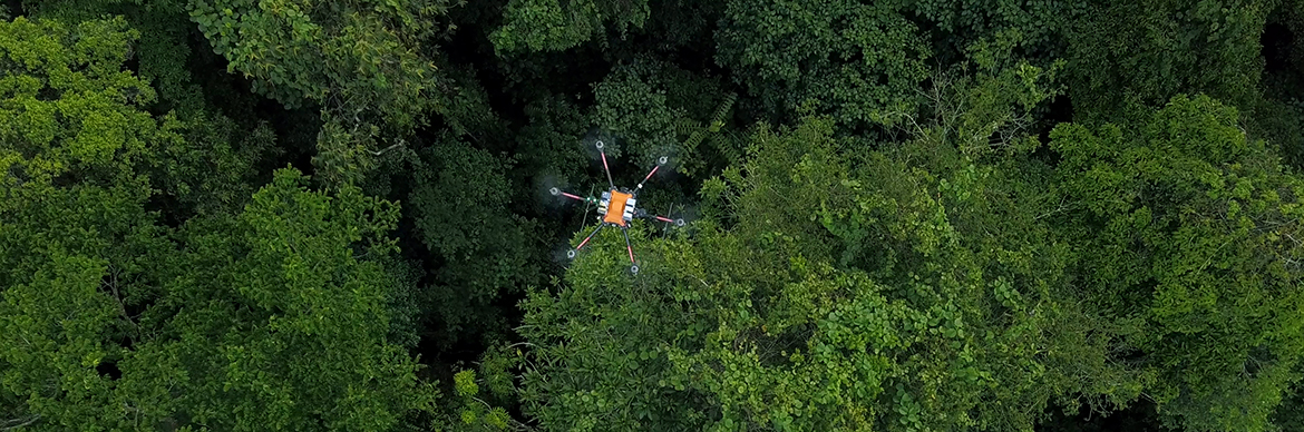 Metis Pilot - Phase 1 in Tropical Forest in Papua New Guinea - Exploration & Production - Total