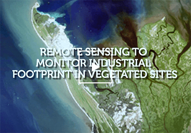 Remote sensing of plant exposure to hydrocarbons and metals: a new way to monitor industrial footprint in vegetated sites